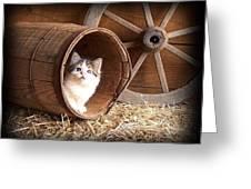 Tiki In The Old Barrel Greeting Card