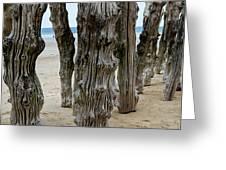 Timber Textures Lv Greeting Card