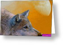 Timber Wolf Under The Moon Greeting Card by Tina B Hamilton