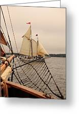 Timberwind Off The Bow Greeting Card