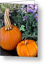 Time For Pumpkins In The Flower Beds Greeting Card