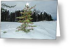 Time Of The Season Greeting Card