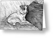 Time Out - Jack Russell Dog Print Greeting Card by Kelli Swan