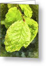 Time Travel Summer Leaves Greeting Card