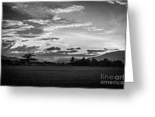 Timeless Sunsets Greeting Card