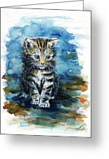 Timid Kitten Greeting Card