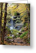 Tinker Falls Greeting Card