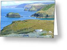 Tintagel Greeting Card