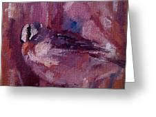 Tiny Bird Study #1 Greeting Card