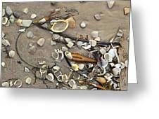 Tiny Crab Shells Greeting Card