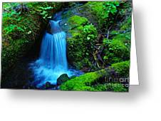 Tiny Falls Greeting Card