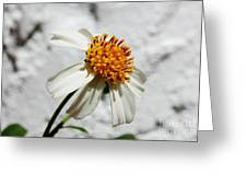 Tiny Flower  Greeting Card