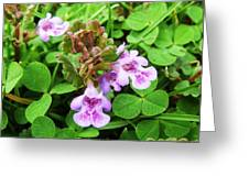 Tiny Flowers I Greeting Card
