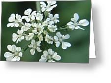 Tiny White Greeting Card