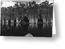 Tip Of The Kayak Greeting Card by Tara Miller