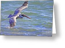 Tip Of The Wing Greeting Card