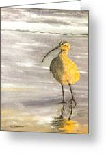 Tippy Toes  Greeting Card