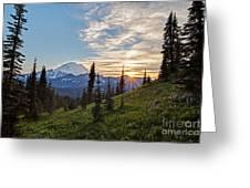 Tipsoo Field Of Summer Greeting Card