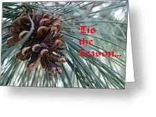 Tis The Seaon Holiday Image Greeting Card