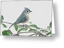 Titmouse Greeting Card