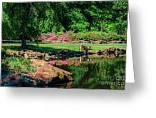 Taking A Break At The Azalea Pond Greeting Card