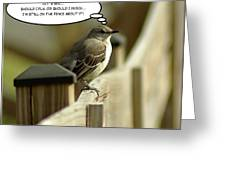 To Fly Or Not To Fly Greeting Card