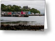 Tobermory Town Cityscape, Isle Of Mull Greeting Card