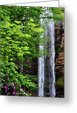 Toccoa Falls In Georgia Greeting Card