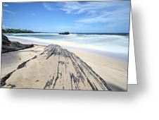 Toco Beach Greeting Card