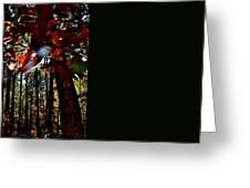 Todays Art 202 Greeting Card