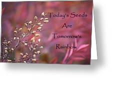 Todays Seeds Tomorrows Rainbows Greeting Card