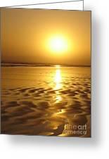 Tofino Sunset Greeting Card