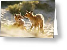 Togetherness - Mother And Kit Moment Greeting Card