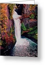 Tokeetee Falls Greeting Card