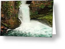Toketee Falls 4 Greeting Card