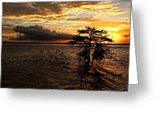 Toledo Bend Sunset Greeting Card