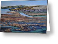 Tomales Bay Tangents Greeting Card