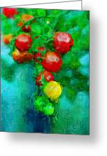 Tomatos Greeting Card