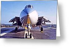 Tomcat Greeting Card