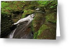 Tompkins Falls Catskills N.y.-7 Greeting Card
