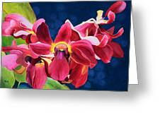 Tom's Orchid Greeting Card