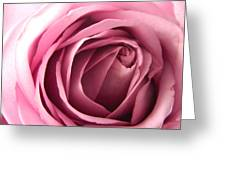 Toni's Rose  Greeting Card