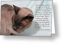 Tonkinese Cat Romans 3 V 21-24 Greeting Card