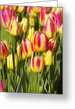Too Many Tulips Greeting Card by Jeff Kolker
