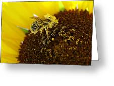 Too Much Pollen Greeting Card