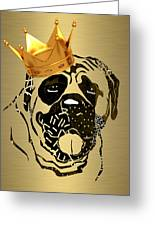 Top Dog Collection Greeting Card