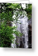 Top Half Of Toccoa Falls Greeting Card
