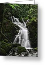 Top Of Mouse Creek Falls  Greeting Card