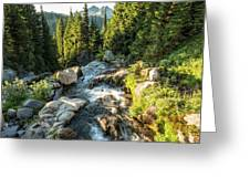 Top Of The Morning At The Top Of Myrtle Falls Greeting Card