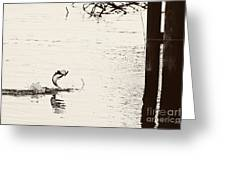 Top Water Explosion Greeting Card by Scott Pellegrin